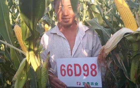 66d98  1.jpg